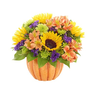 """Harvest Pumpkin"" bouquet of flowers for sale"